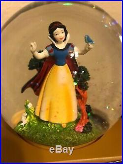 Disney Snow White and Evil Queen Villains collection Snowglobe RARE